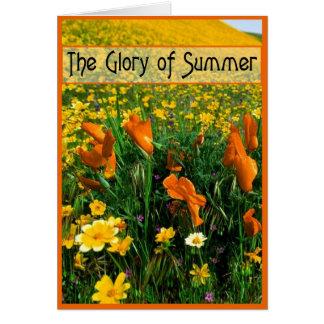 Gloria del verano