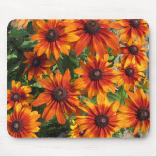 Gloriosa Daisies Rustic Colors Mouse Pad