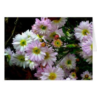 Glorious Chrysanthemums photographic card blank