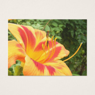 Glorious Day Lily ~ ATC Business Card