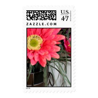 Glorious Gerbers Stamp