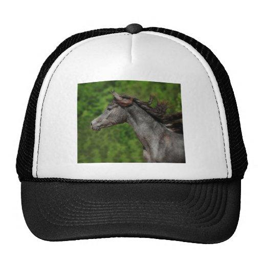 Glorious Mesh Hat