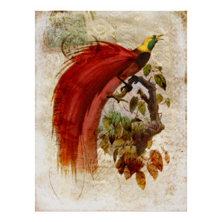 Glorious Red Plumed Bird Vintage Lace Print