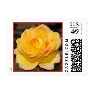Glorious Rose Postage