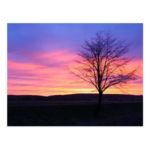 Glorious Sunrise Postcard