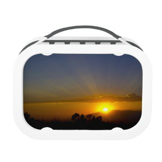 Glorious Sunset Lunchboxes