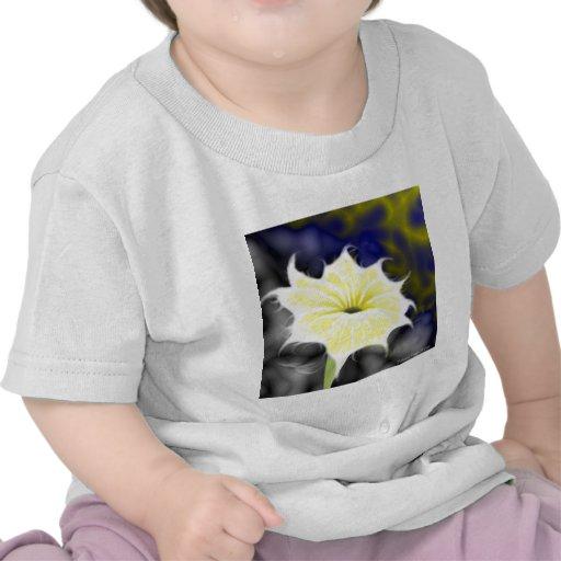 Glory Divine Tee Shirts