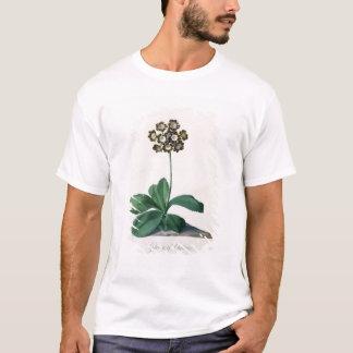 Glory of Chilton (gouache on vellum) T-Shirt
