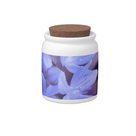 Glory of the Snow Blue Candy Jar