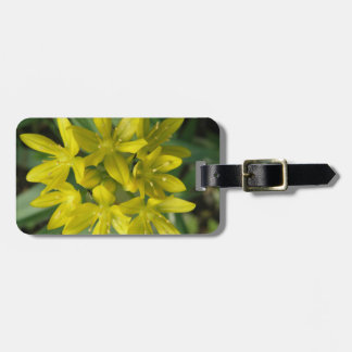 Glory of the Snow Custom Luggage Tag