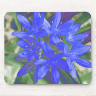 Glory Of The Snow Fluorescent Blue Mousepad