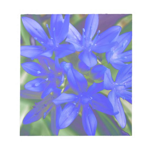 Glory of the Snow Fluorescent Blue Notepad