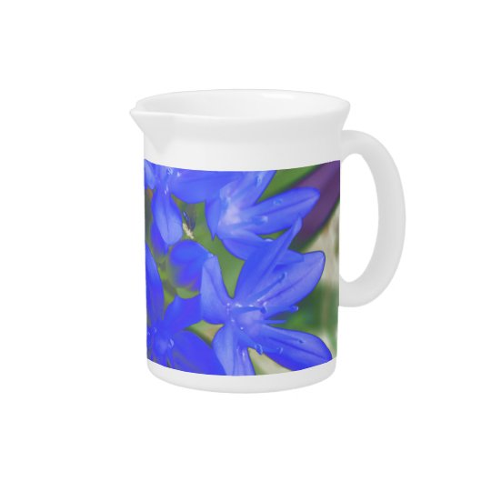 Glory of the Snow Fluorescent Blue Pitcher