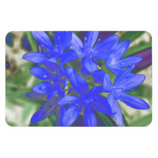 Glory of the Snow Fluorescent Blue Premium Magnet