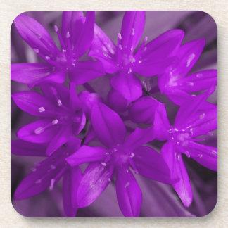 Glory of the Snow Purple Cork Coaster