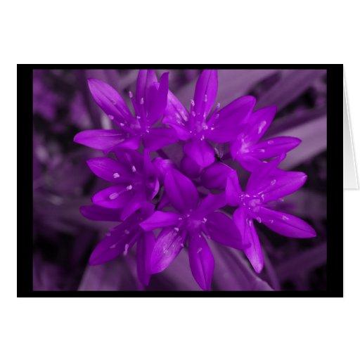 Glory Of The Snow Purple Greeting Card