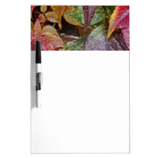 Glossy autumn leaves, Wax-Look 001.1.2 Dry-Erase Board