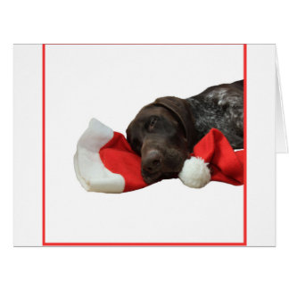 Glossy Grizzly Christmas Pointer Card