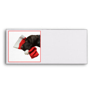 Glossy Grizzly Christmas Pointer Envelope