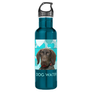 Glossy Grizzly dog water bottle