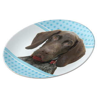 Glossy Grizzly in Blue Kitchen & Dining Porcelain Plates