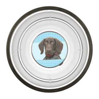 Glossy Grizzly in Blue Kitchen & Dining Pet Bowl