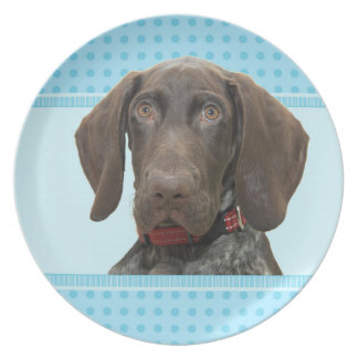 Glossy Grizzly in Blue Kitchen & Dining Party Plate