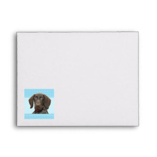 Glossy Grizzly in Blue Stationary Envelope