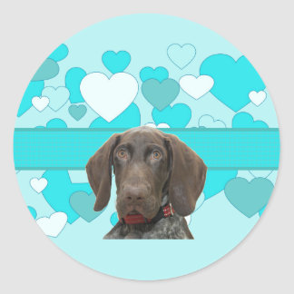 Glossy Grizzly in Blue Classic Round Sticker