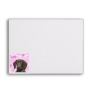 Glossy Grizzly in Pink Envelope
