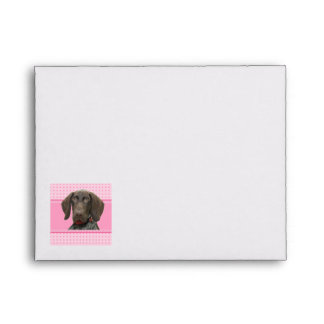 Glossy Grizzly in Pink Envelopes