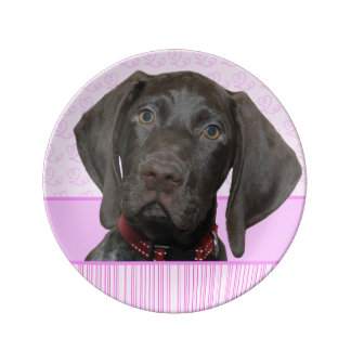 Glossy Grizzly in Pink Porcelain Plate