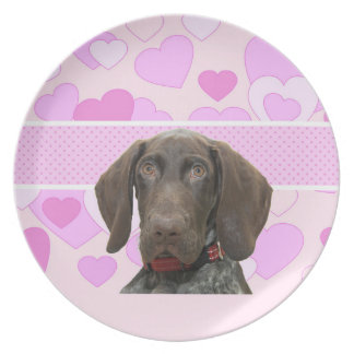 Glossy Grizzly in Pink Dinner Plates