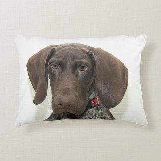 Glossy Grizzly Accent Pillow