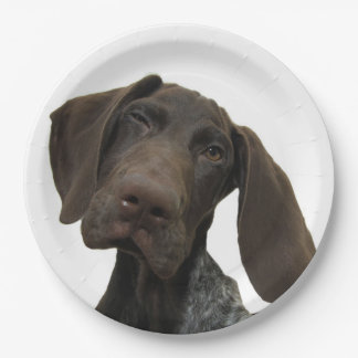 Glossy Grizzly 9 Inch Paper Plate