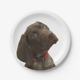 Glossy Grizzly 7 Inch Paper Plate