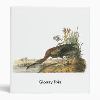 Glossy Ibis, John Audubon Binder