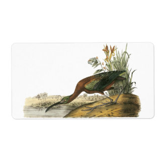 Glossy Ibis, John Audubon Custom Shipping Labels