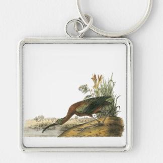 Glossy Ibis, John Audubon Key Chain