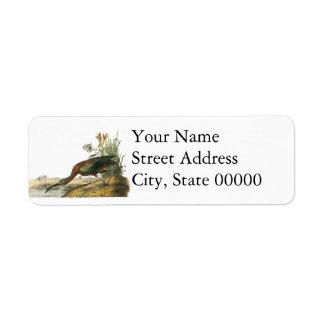 Glossy Ibis, John Audubon Custom Return Address Label