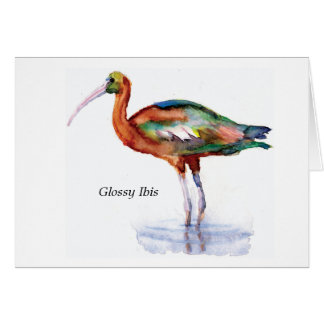 Glossy Ibis note card