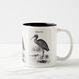 """""""Glossy Ibis"""" Vintage Illustration Coffee Mug"""