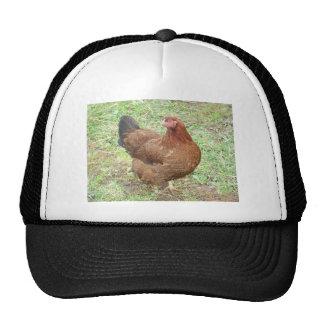 Glossy Partridge Chantceler Hen Trucker Hat