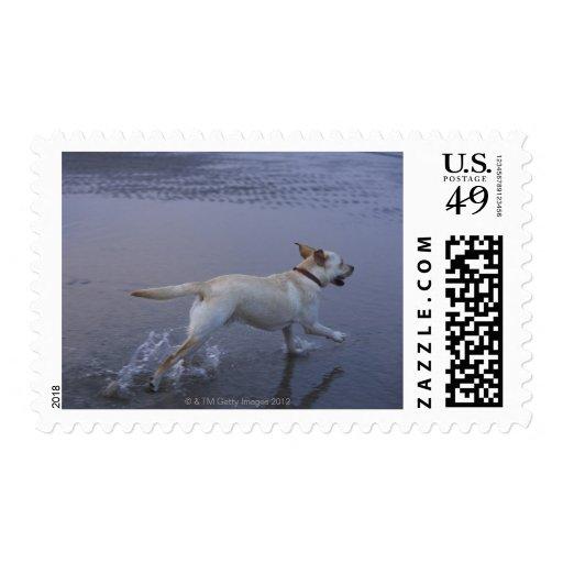 Gloucester, Massachusetts, USA Stamps