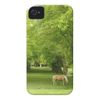 Gloucestershire, Reino Unido Case-Mate iPhone 4 Fundas