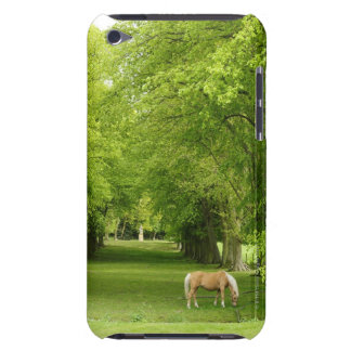 Gloucestershire, UK Barely There iPod Cases