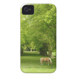Gloucestershire, UK iPhone 4 Cover