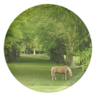 Gloucestershire, UK Melamine Plate