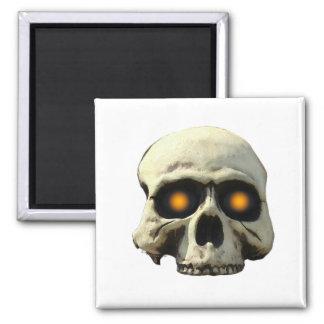 Glow Skull Magnet