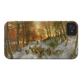 Glowed with Tints of Evening Hours iPhone 4 Case-Mate Cases